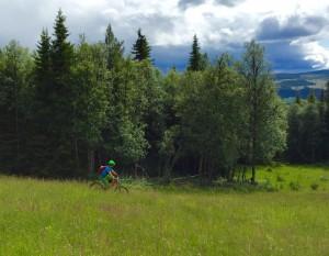 Foto: Sveinung Hveding