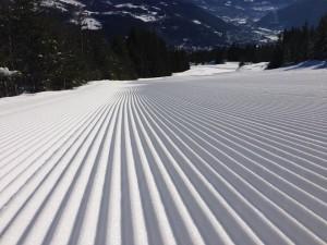 Gol Skipark
