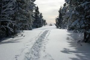 Vinterfjell 17