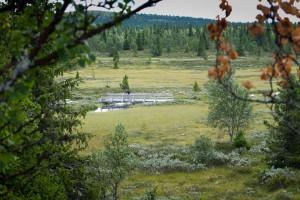 Foto: Bjørn Jarle Kvande
