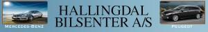 Hallingdal Bilsenter_Logo