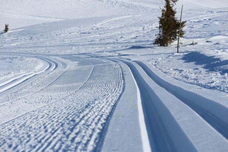 Status langrennsløyper i Gol -Skisporet.no