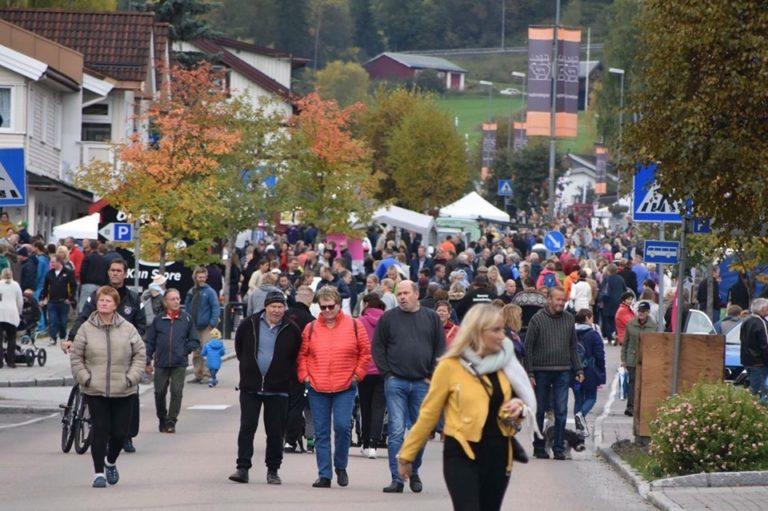 Bruktmarked under GØY PÅ LANDET – en mini Fårefestival